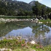 """Una """"laquette"""", pequeño lago en Néouvielle"""