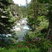 Waterfalls of Cauterets