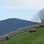 Between Nestes and Baronnies
